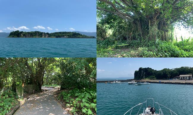 新島(燃島)