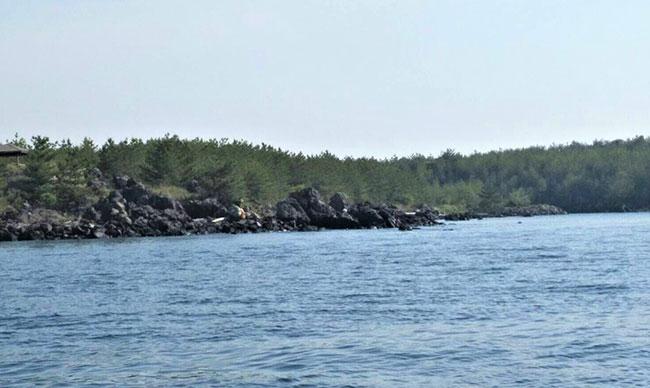 鳥島展望所沿岸